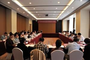 2013年针灸标准及临床实践指南项目审查会在成都召开