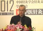 2012中国针灸北京论坛-总结发言